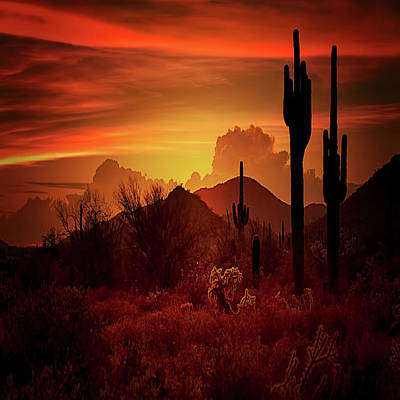 Poster featuring the photograph Essence Of The Southwest - Square  by Saija Lehtonen