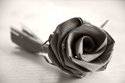 Eternal Rose In Sepia Poster