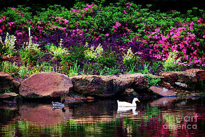 Ethreal Beauty At The Azalea Pond Poster by Tamyra Ayles