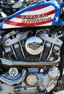 Evel Harley Davidson Poster