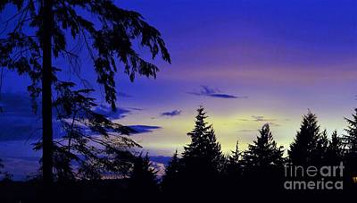 Poster featuring the photograph Evening Blue by Victor K