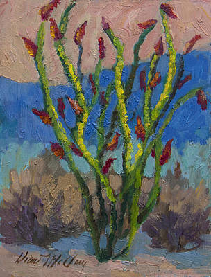 Evening Ocotillo Poster by Diane McClary