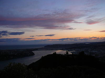 Evening Otago Harbour Poster by Terry Perham