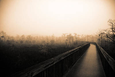 Poster featuring the photograph Everglades Boardwalk by Gary Dean Mercer Clark