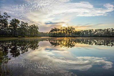 Everglades Ovation Poster by Jon Glaser