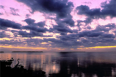 Everglades Sunrise Poster by Alan Lenk