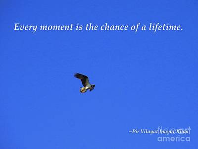 Every Moment Is The Chance Of A Lifetime Poster by Agnieszka Ledwon