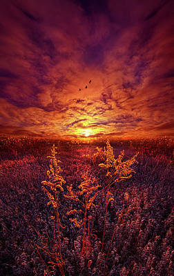 Poster featuring the photograph Every Sound Returns To Silence by Phil Koch