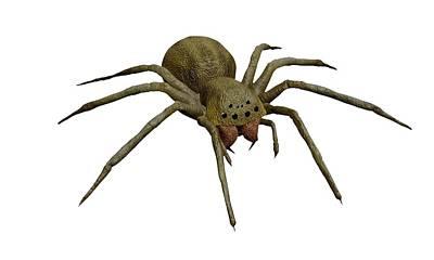 Evil Spider Poster