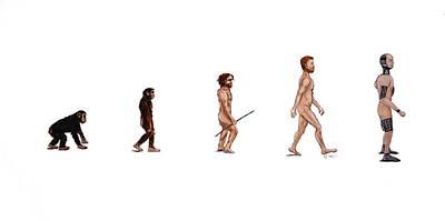 Evolution Of Rob Poster by Jennifer Lynch