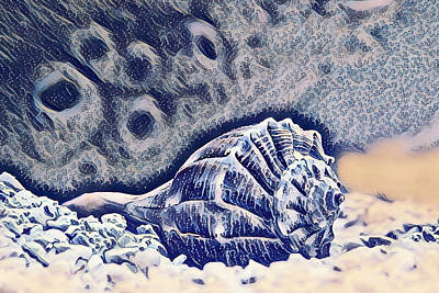Exotic Seashell Art Poster
