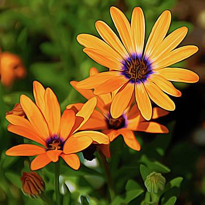 Expressionalism Orange Daisy Poster