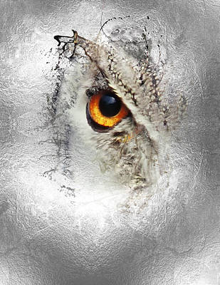 Poster featuring the photograph Eye Of The Owl 1 by Fran Riley