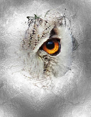 Poster featuring the photograph Eye Of The Owl 2 by Fran Riley