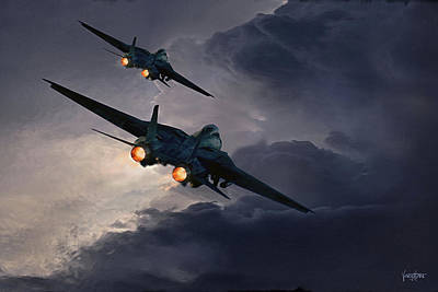 F-14 Flying Iron Poster