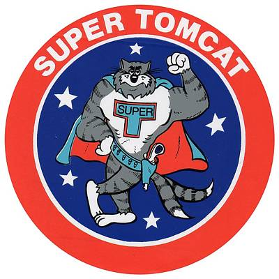 F-14 Super Tomcat Poster