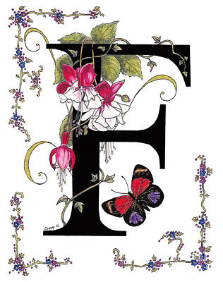 F Is For Fuschias And A Figure Eight Butterfly Poster by Stanza Widen