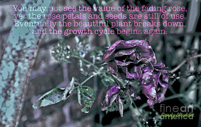 Poster featuring the photograph Fading Rose by Sandy Moulder
