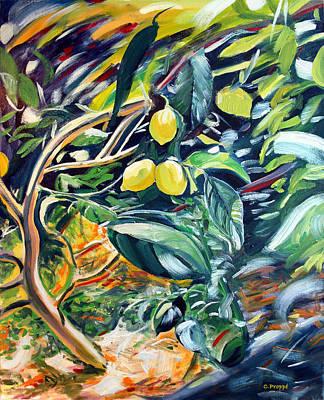 Fairfax Fresh Meyer Lemons Poster