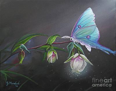 Fairy Lantern's Glow Poster by Joe Mandrick