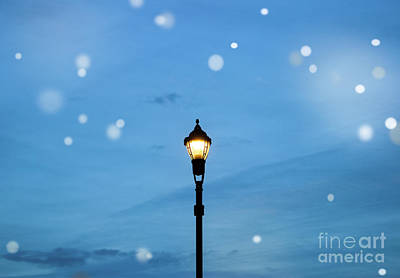 Fairy Light Poster by Colleen Kammerer