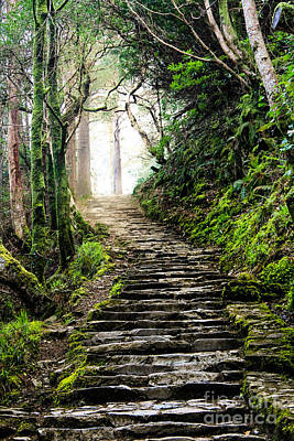 Fairytale Stairs Poster