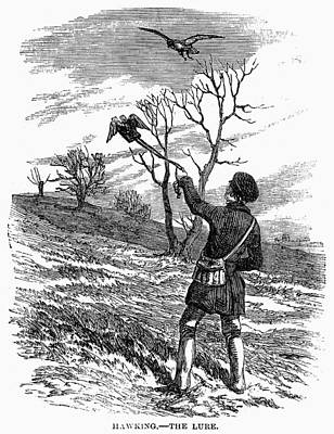 Falconry, 1850 Poster by Granger
