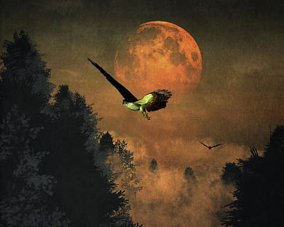 Falcons Hunting In The Evening Poster