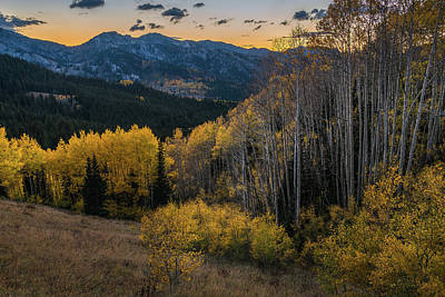 Fall Aspens At Dusk In The Wasatch Poster
