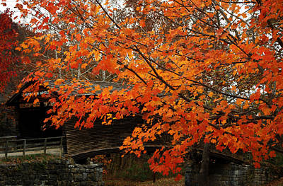 Fall At Humpback Bridge Poster by Cathy Shiflett