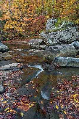 Fall At Richland Creek  Poster by Damon Shaw