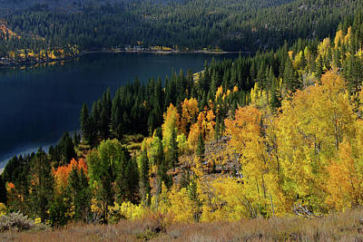 Fall At Rock Creek Lake Eastern Sierra Poster
