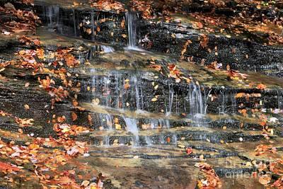 Fall Cascades Poster