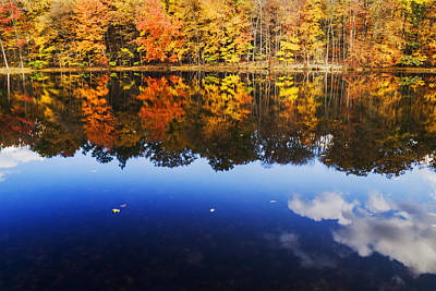 Fall Color And Sky Reflection Poster by Vishwanath Bhat