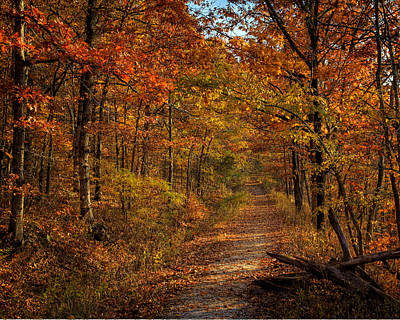 Poster featuring the photograph Fall Color At Centerpoint Trailhead by Michael Dougherty
