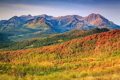 Fall Color On The East Slope Of Timpanogos. Poster