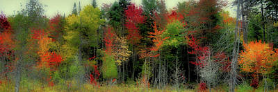 Poster featuring the photograph Fall Color Panorama by David Patterson
