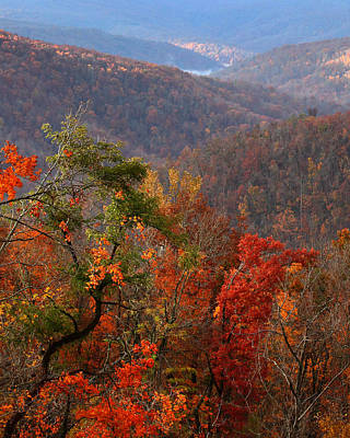 Poster featuring the photograph Fall Color Ponca Arkansas by Michael Dougherty