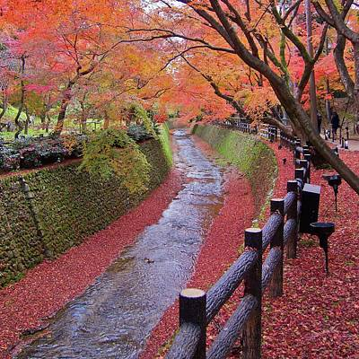 Fall Colors Along Bending River In Kyoto Poster