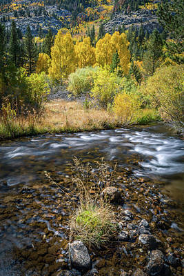 Poster featuring the photograph Fall Colors At South Fork Bishop Creek by Alexander Kunz