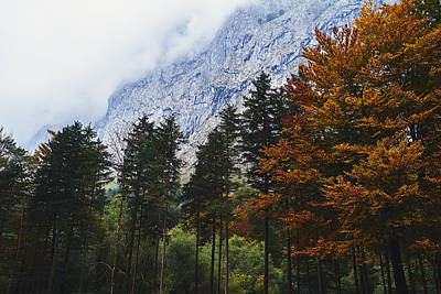 Fall Colors In Salzburg Poster by Sandeep Murali