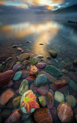 Poster featuring the photograph Fall Colors // Lake Mcdonald, Glacier National Park  by Nicholas Parker