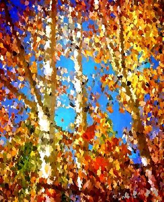 Fall Colors Poster by Sarah Jane Thompson