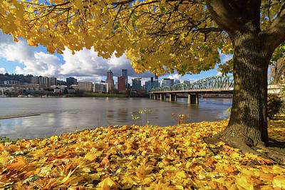 Fall Foliage With Portland Oregon City Poster