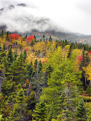 Fall In Baxter State Park Maine Poster by Brendan Reals