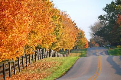 Fall In Horse Farm Country Poster