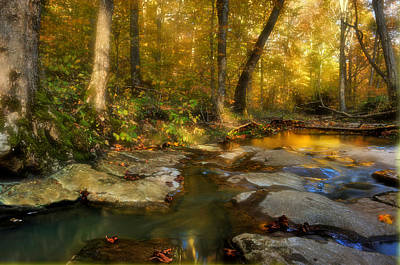 Fall In The Shawnee National Forest Poster by Donna Caplinger