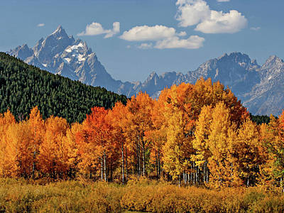 Fall In The Tetons Poster