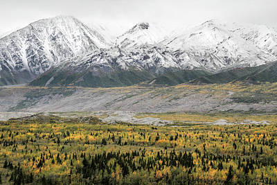 Fall In Wrangell - St. Elias Poster