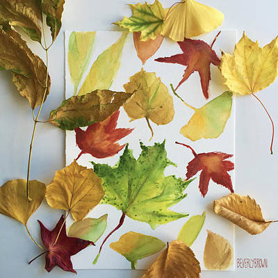Fall Leaves In My Studio Poster by Beverly Brown